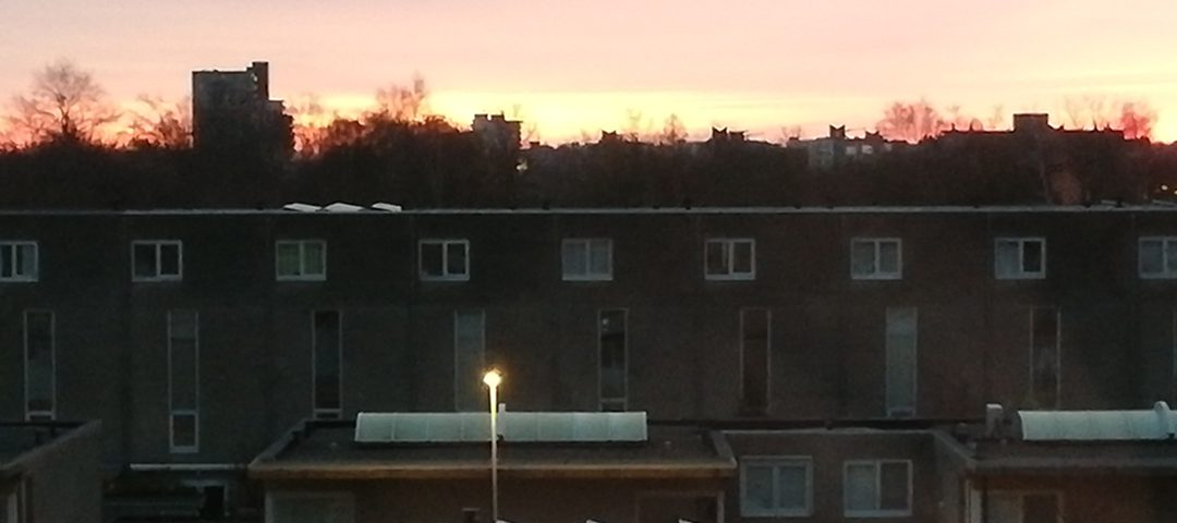 Woningen met zonnepanelen besparen op elektriciteitsrekening